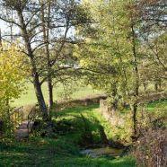 saint-pierre-le-vieux-riviere.jpg